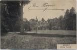 AK Rastatt Blick auf Schloss Favorite 1910