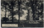 AK Friedland in Mecklenburg Partie an der Wallpromenade 1910 RAR