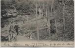 AK Zeitz Partie im Knittelholz mit Menschen 1906