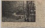 AK Gruß aus Schleswig Wickeltal im Tiergarten 1900