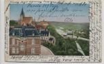 AK Leisnig in Sachsen Blick vom Belvedere Ortsansicht 1909