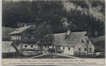 AK Neuwald bei Frein a. d. Mürz Karl Digruber's Gasthaus bei St. Aegyd am Neuwalde Mürzsteg Niederösterreich Österreich 1910