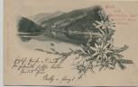 AK Sarntal bei Bozen Gruß vom Durnholzer See Südtirol Italien 1898 RAR