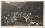 AK Foto Herrnskretschen Hřensko Böhmen Elbe Tschechien 1928