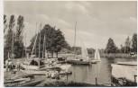 AK Plau am See Am Seglerheim viele Boote Mecklenburg 1960