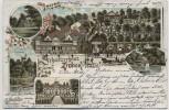 AK Litho Ziebigk bei Dessau Gruss vom Schweizerhaus 1897 RAR