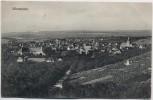 AK Winnenden Ortsansicht 1917