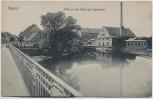 AK Raguhn Partie an der Mulde mit Papierfabrik 1918 RAR