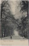 AK Gruss aus Glückstadt Haupt-Allee 1910
