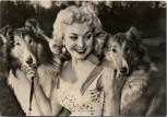 AK Foto Frau mit 2 Collies Peter Steffen Auslandsdienst 1956