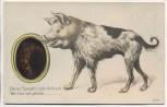 AK Dieses Spieglein gibt dir kund Wer hier der grösste ... Schweinehund 1910