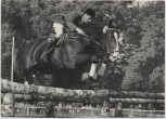 AK Reitsport ALA unter Alfons Lütke-Westhues Springreiten Continental Farmer 1970