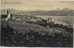 AK Meersburg am Bodensee Blick auf Stadt 1910