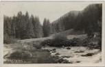 AK Foto Nízke Tatry Niedere Tatra Jánska dolina Slowakei 1930