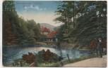 AK Wernigerode Christianental Harz 1924