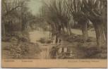 AK Alkmaar Zandersloot Uitg Louis Frankenberg Nordholland Niederlande 1910