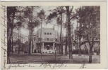 AK Berlin Zehlendorf Wannsee Blick auf Villa hinter Bäumen 1912 RAR