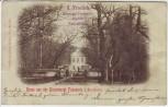 AK Neustrelitz Gruss aus der Grossherzgl. Fasanerie 1899