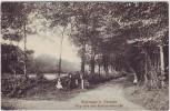 AK Moorrege bei Uetersen Weg nach dem Koerner'schen Hof mit Kindern 1913 RAR
