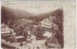 AK Alexisbad bei Harzgerode Ortsansicht 1905