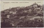 AK Dresden Ober-Loschwitz Weisser Hirsch Luisenhof mit Drahtseilbahn 1911