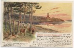 AK Litho Gruss aus dem Grunewald Kaiser Wilhelm-Turm mit Hirsch Berlin 1900