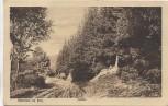 AK Dankerode b. Harzgerode im Harz Marktal 1922