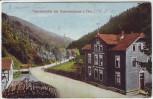 AK Unterneubrunn Gast-u. Logirhaus Zur Tannenmühle bei Schleusegrund 1910