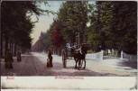 AK Zeist Driebergschestraatweg mit Pferdekutsche Provinz Utrecht Niederlande 1900