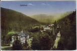 AK Spišská Nová Ves Iglofüred Ortsansicht Slowakei 1915