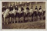 AK Foto Wien Spanische Reitschule Lipizzaner mit Reiter 1940