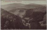 AK Sankt Andreasberg Oberharz Wäschgrund bei Braunlage 1911