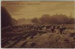 AK Elbingerode (bei Herzberg am Harz) Austreiben der Rinder 1920