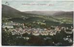 AK Baden-Baden Totale vom Friesenberg gesehen 1911