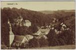 AK Liebstadt in Sachsen Ortsansicht 1910
