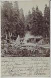 AK Köhlerei am Meineckenberg bei Ilsenburg am Harz 1907 RAR