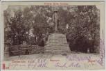 AK Nordenham Atens Bürgerpark Wilhelm Müller Denkmal 1905