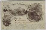 AK Magdeburg Wilhelmsgarten Gruson-Gewächshaus 1899