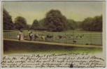 AK Hamburg-Blankenese Dockenhuden Im Hirschpark 1903