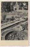 VERKAUFT !!!   AK Foto Dresden Reichsgartenschau Im vielgestaltigen Garten sonnt sich der Froschkönig 1936