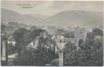 AK Ilsenburg Gesamtansicht 1906