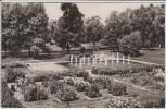 AK Foto Zossen in Brandenburg Parkanlagen 1967