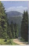 AK Der Schneekopf Höchster Punkt des Thüringer Waldes bei Gehlberg Oberhof 1920