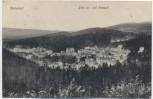 AK Marienbad Blick vom Cafe Rübezahl Mariánské Lázně Tschechien 1919