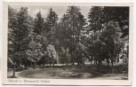 AK Foto Rotensol im Schwarzwald Waldsee b. Herrenalb Landpoststempel 1952