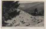 AK Manebach Thüringer Wald Kuhherde bei Ilmenau 1950
