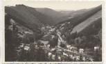 AK Foto Mellenbach-Glasbach Schwarzatal Ortsteil Blumenau 1957