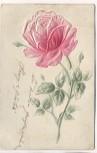 Präge-AK Rote Rose 1908