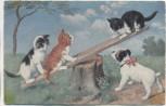 AK 3 Katzen Kätzchen auf Wippe mit Hund 1920