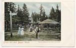 AK Gruss aus dem Bayrischen Wald Unterkunftshaus auf dem Dreisessel mit Menschen b. Neureichenau Haidmühle 1900
